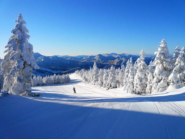 reesol.cocolog-nifty.com > 2011/01/03 志賀高原スキー場